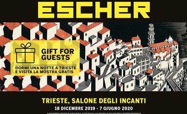 Mostra Escher Trieste